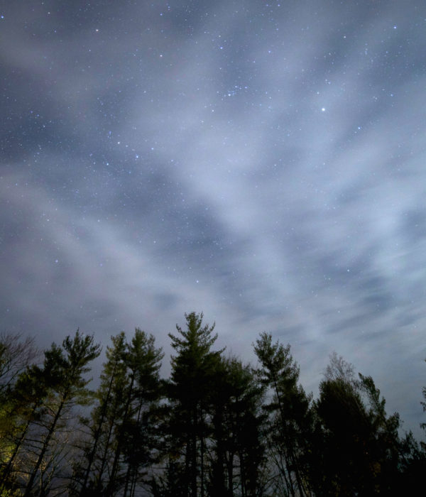 night-stars-clouds-trees-1
